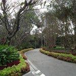 Taman Roma Street