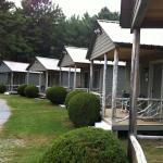Foto de Pine Tree Motel & Cabins
