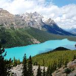 Peyto Lake Lookout