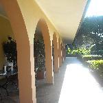 Photo de Villa La Pineta