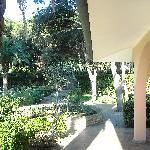 Photo of Villa La Pineta
