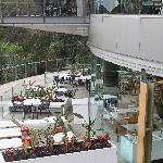 Fenix Restaurant II