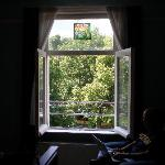 Bedroom window and view