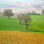 typical colours around Bazzano