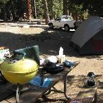 My Azalea campsite