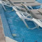 more yucky pool