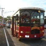 Le trolleybus passe régulièrement devant le motel et vous amène au village et à la plage, pour s