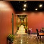Saj Resorts