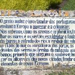 """""""Le génie [...] des Portugais a enseigné à l'Europe à naviguer et à coloniser"""" (sic)"""