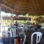 shade / hammocks / cafe & amenities by beach