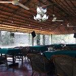 Contour Jungle Resorts