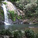 Swim in sparkling waterfall pool