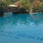 Pool side for kids