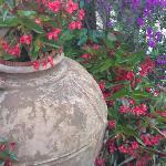 Flowers allover