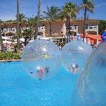 Hamster balls at playa Mar