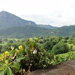 View from Pension Schwarzenbach