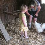 The girls feeding the chickens.