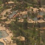 The Wonderful oasis pool