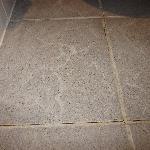 the bathroom floor