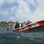 Bote de Austral Divers