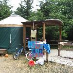 Yurt #83