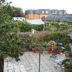 Jardincillo con manzano (vista de la habitación)