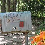 Keep an eye open for the mailbox!