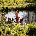 Boy Catching Crawdads in Lake Creek