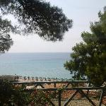 view at the beach from garden