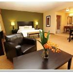 Hampton Inn & Suites -Miami South/Homestead - Studio Suite