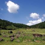 Gochang site