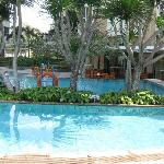 Very shallow swimming pool for adult