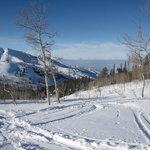 Powder Mountain Foto