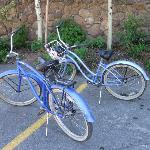 Free bike rental!