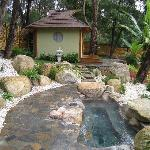 Mineral Hot Spring and Tea House