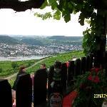 Mit Blick über die Weinberge & Rhein nach Bingen