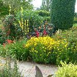 Hot garden