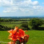 Diamond Hill Countryside