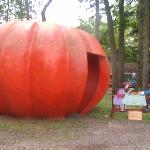 Storybook Lane- Peter, Peter Pumpkin Eater
