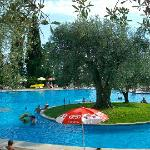 The pool area - shared with holiday village next to Marco Polo