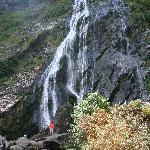 Powerscourt Waterfalls