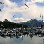 Valdez harbor near hotel