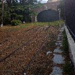 vatican railway!