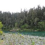 view of Smith River from site
