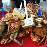 Hot, Steamed Crabs at On the Bay Seafood