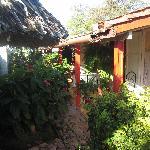 Garden of Villa Sonia