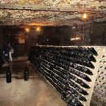 Freixenet winery