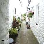 Kirkcudbright hidden gardens