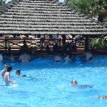 Swim up bar in Water park