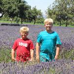 The boys standing in the field.
